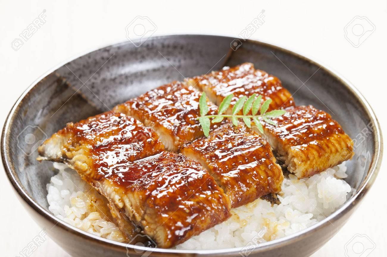 The eel rice bowl Standard-Bild - 49494488