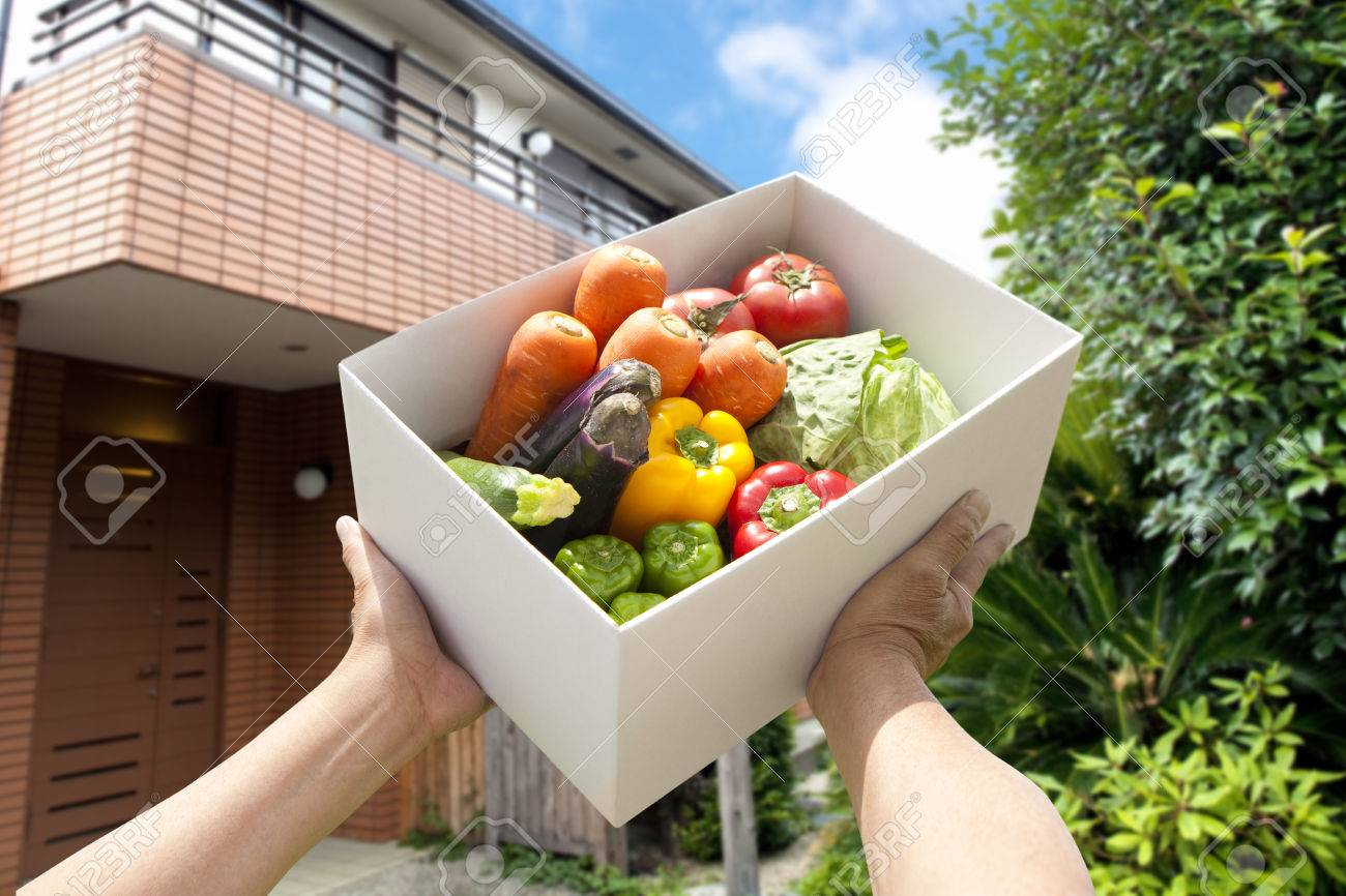 Vegetable home delivery - 50430895