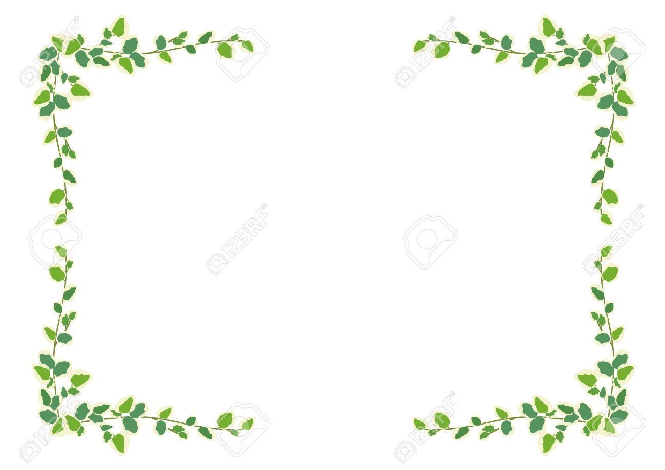 Houseplants: frame - Pumira - 50166368