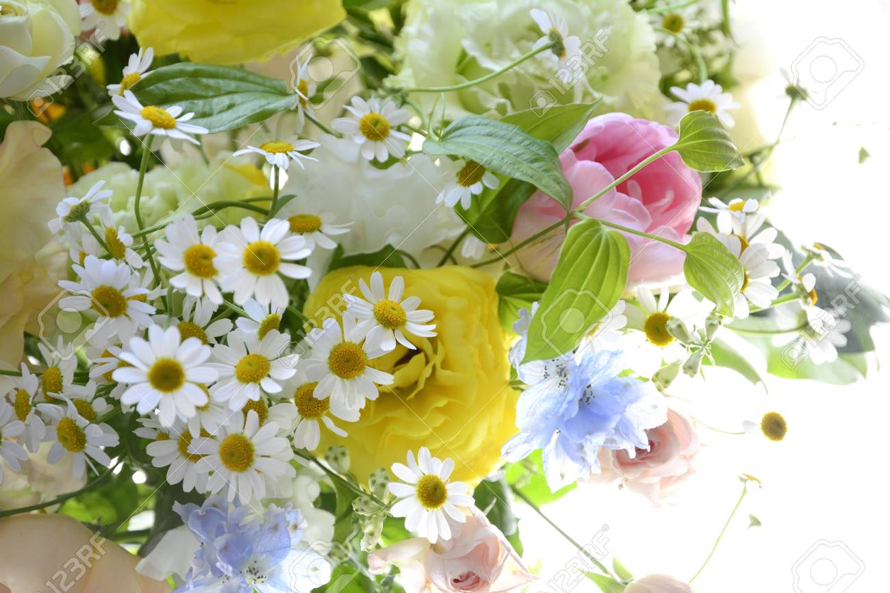 Spring Flower Arrangements Stock Photo Picture And Royalty Free