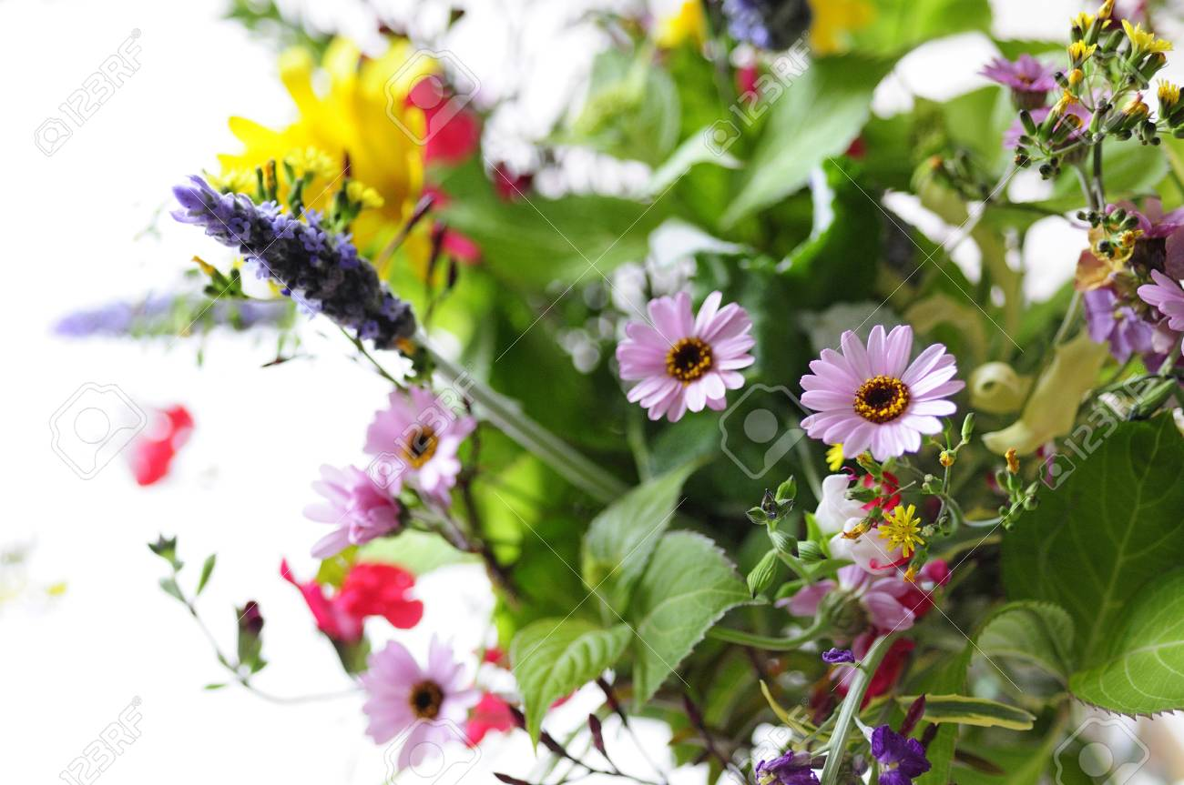 Spring Flower Of Flower Arrangement Stock Photo Picture And Royalty