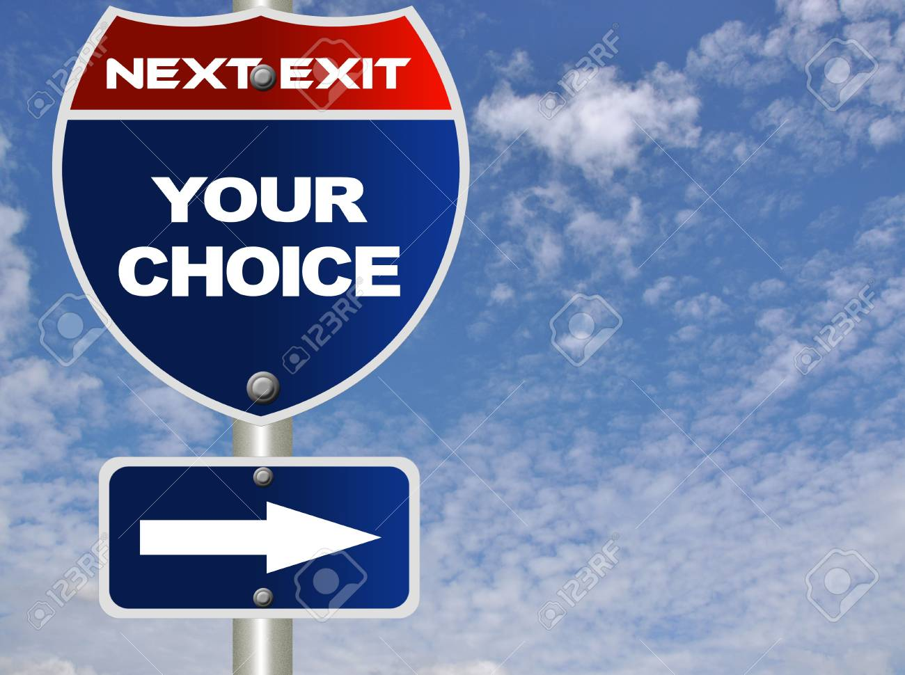 Your choice road sign Stock Photo - 7947525