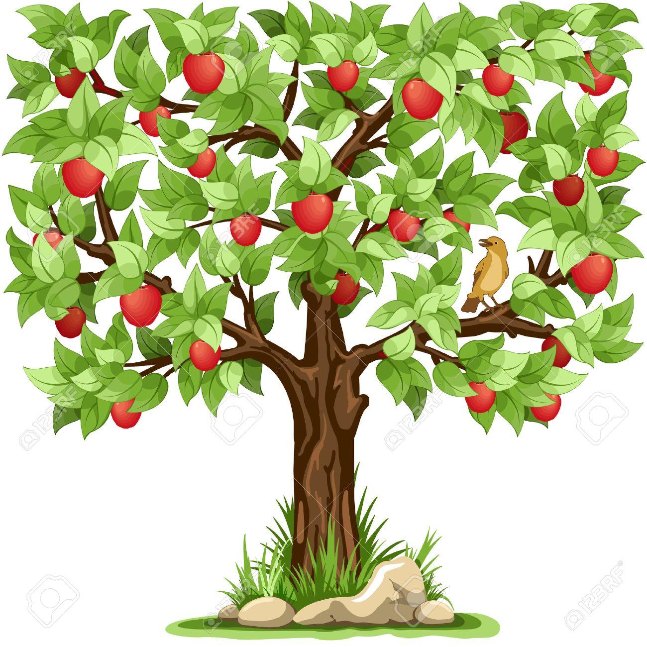 Cartoon apple tree isolated on white background - 55910312