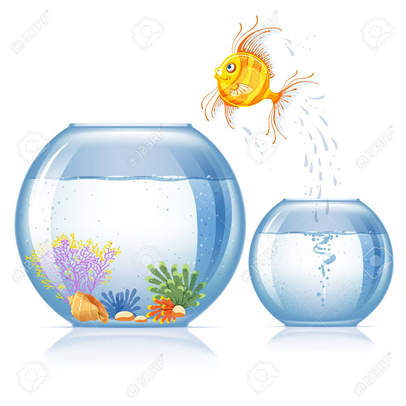 Lonely goldfish jumping to other aquarium, which bigger and more beautiful than the first - 57465283