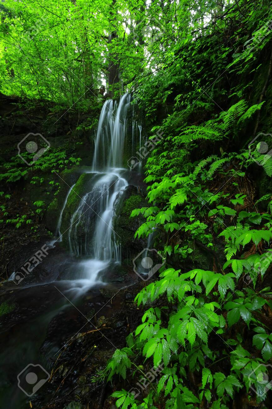 Summer waterfall - 128042448