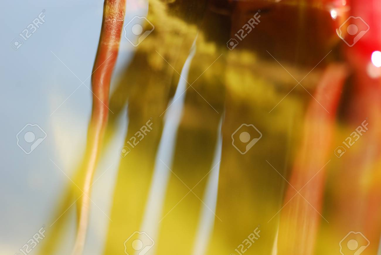 Tropical water plant stems and reflection in the water surface Stock Photo - 22134729