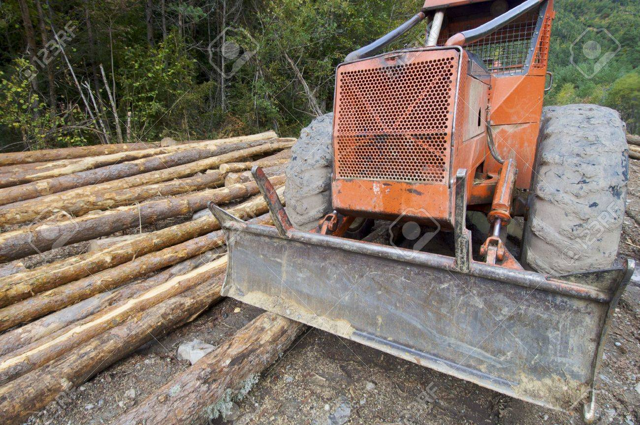 buldozer and cutted trunks in a forest Stock Photo - 5902538
