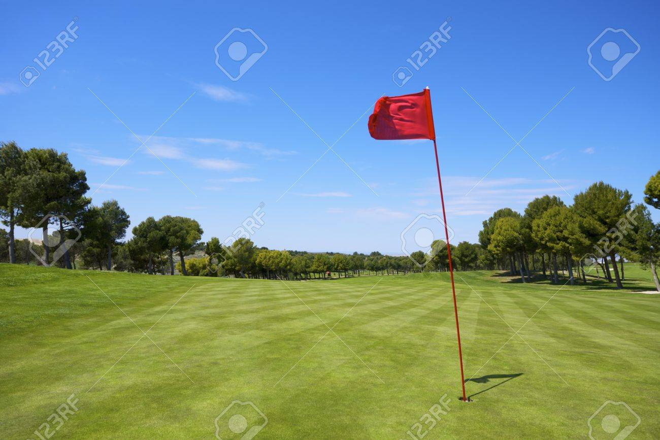 view of a golf course with a red pennant - 19362617