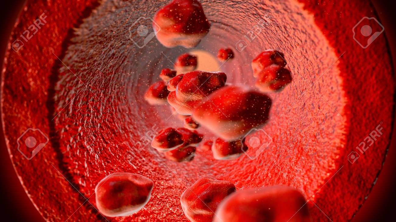 Red blood cells flowing through the blood vessel - 91316309