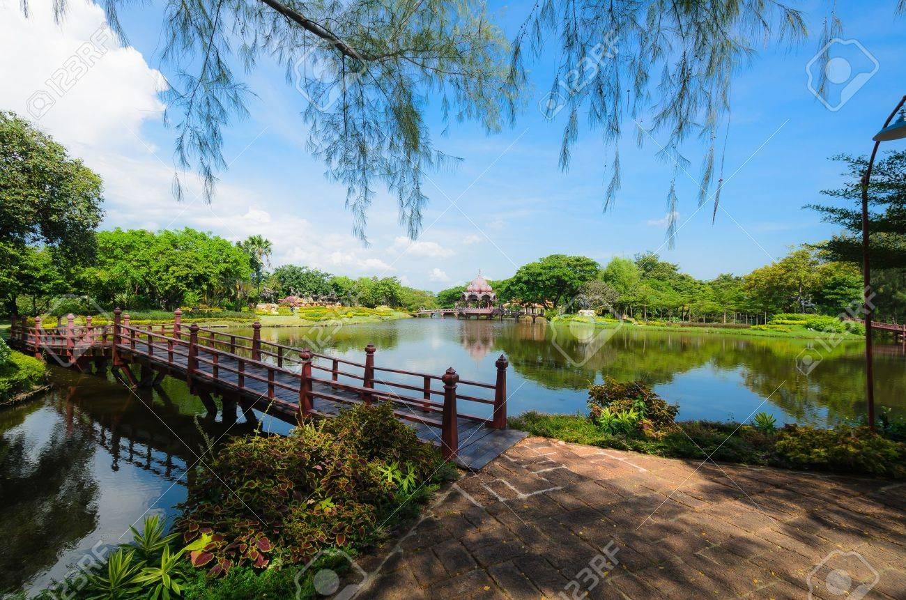 Lovely green garden Stock Photo - 16568598