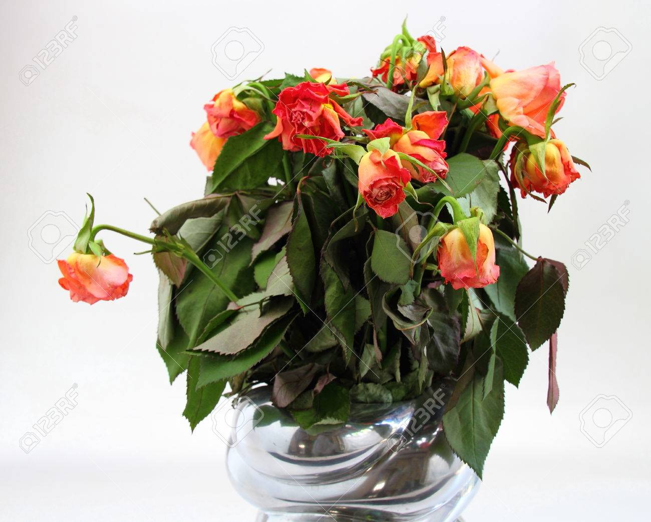 Dead Bouquet Of Roses In A Container Stock Photo Picture And