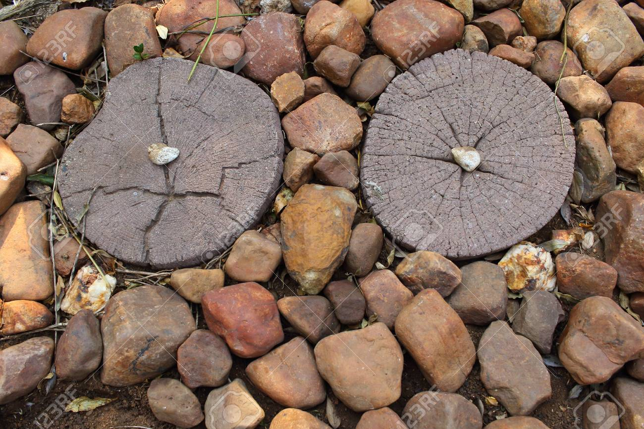 Shapes In Everyday Garden Scenes - The Face In The Stepping Stones ...