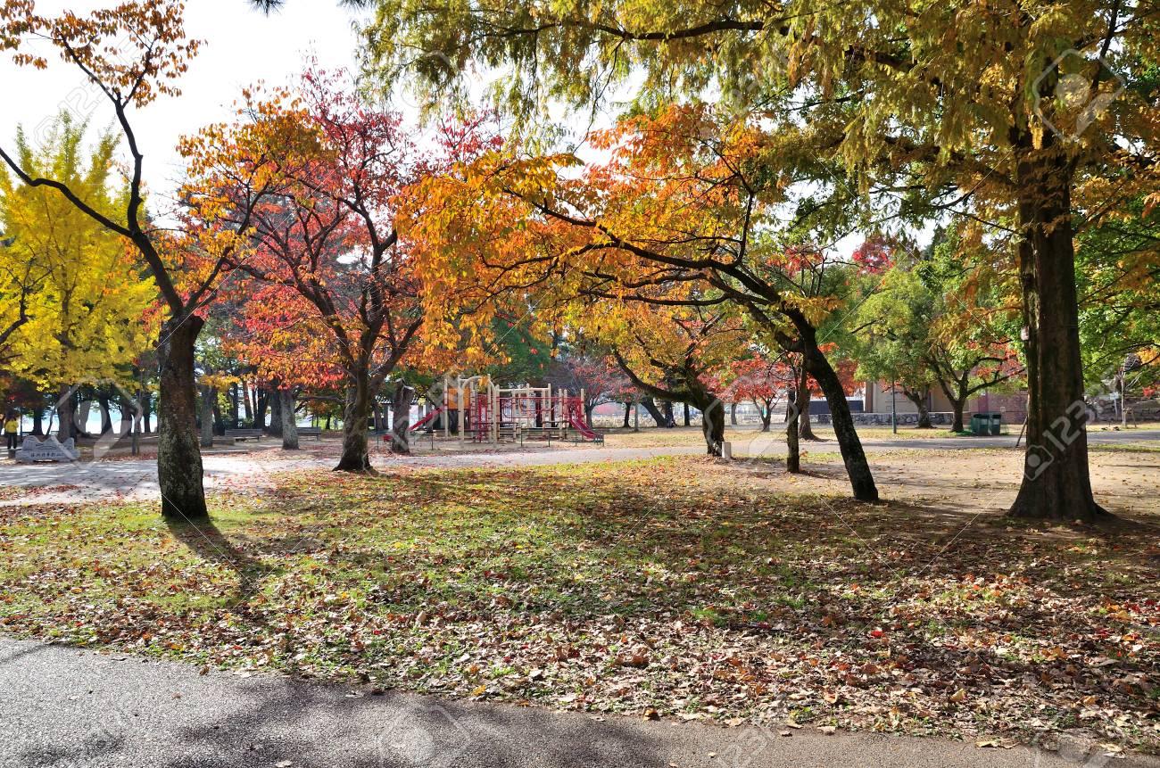 公園 膳所
