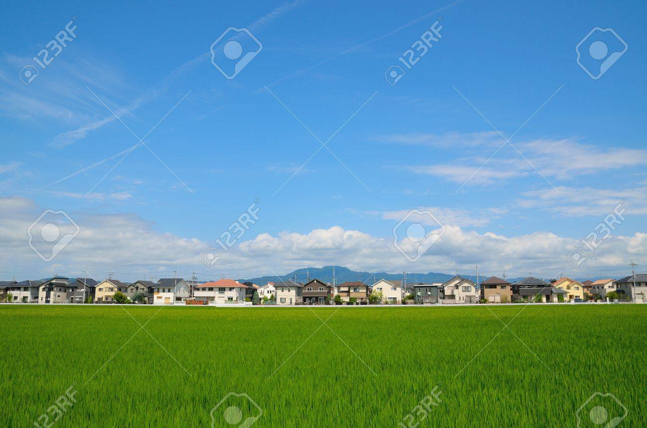 Residential area - 69343590