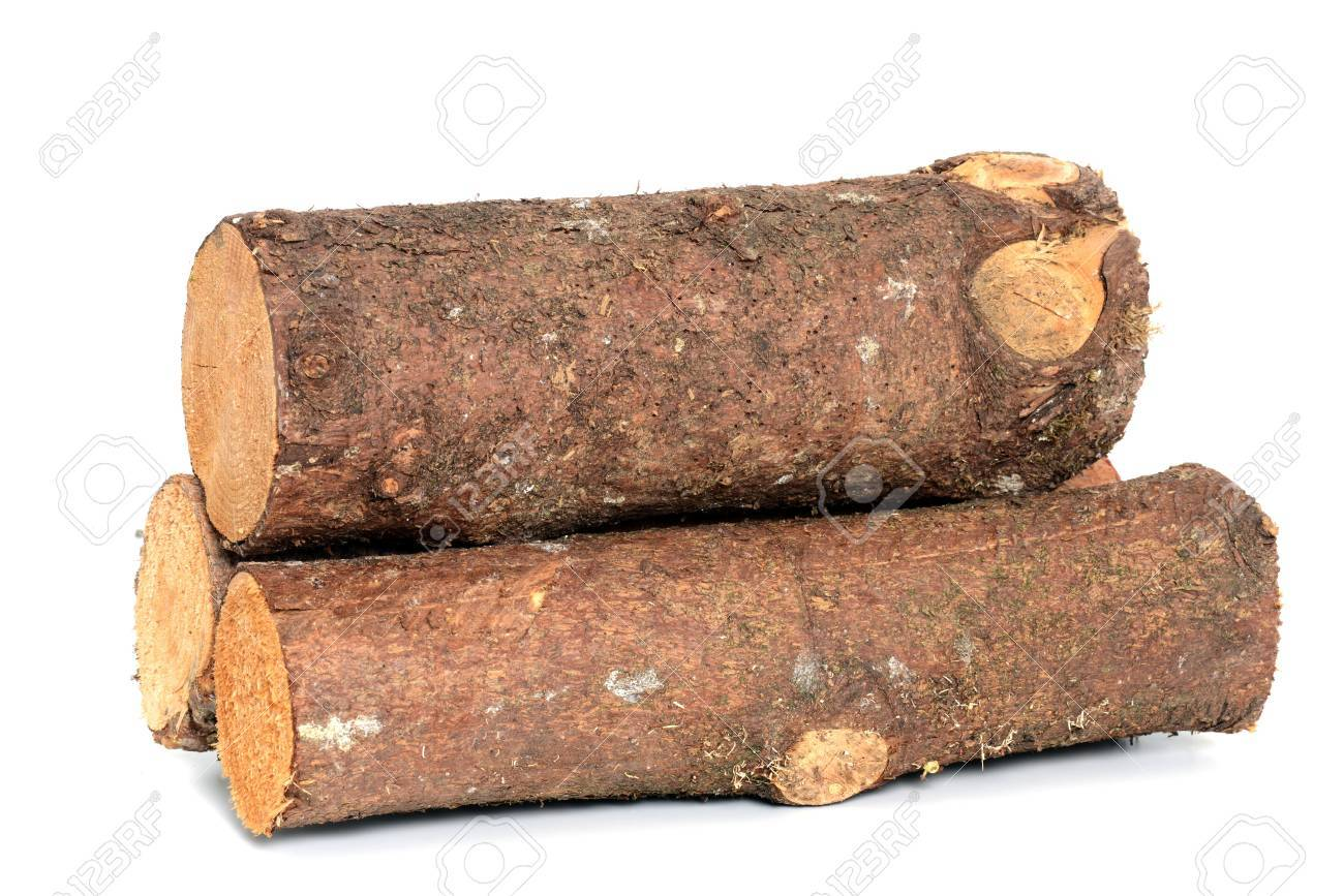 Wood log as fire wood in front of a white background Standard-Bild - 14237951