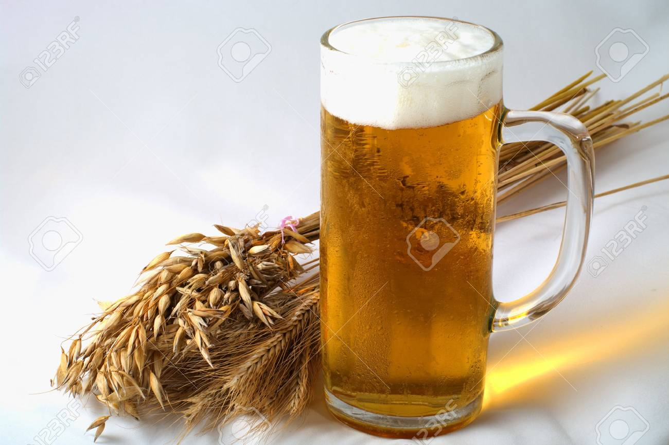 Spikelets barley, wheat and oat with glass of beer Stock Photo - 7616870
