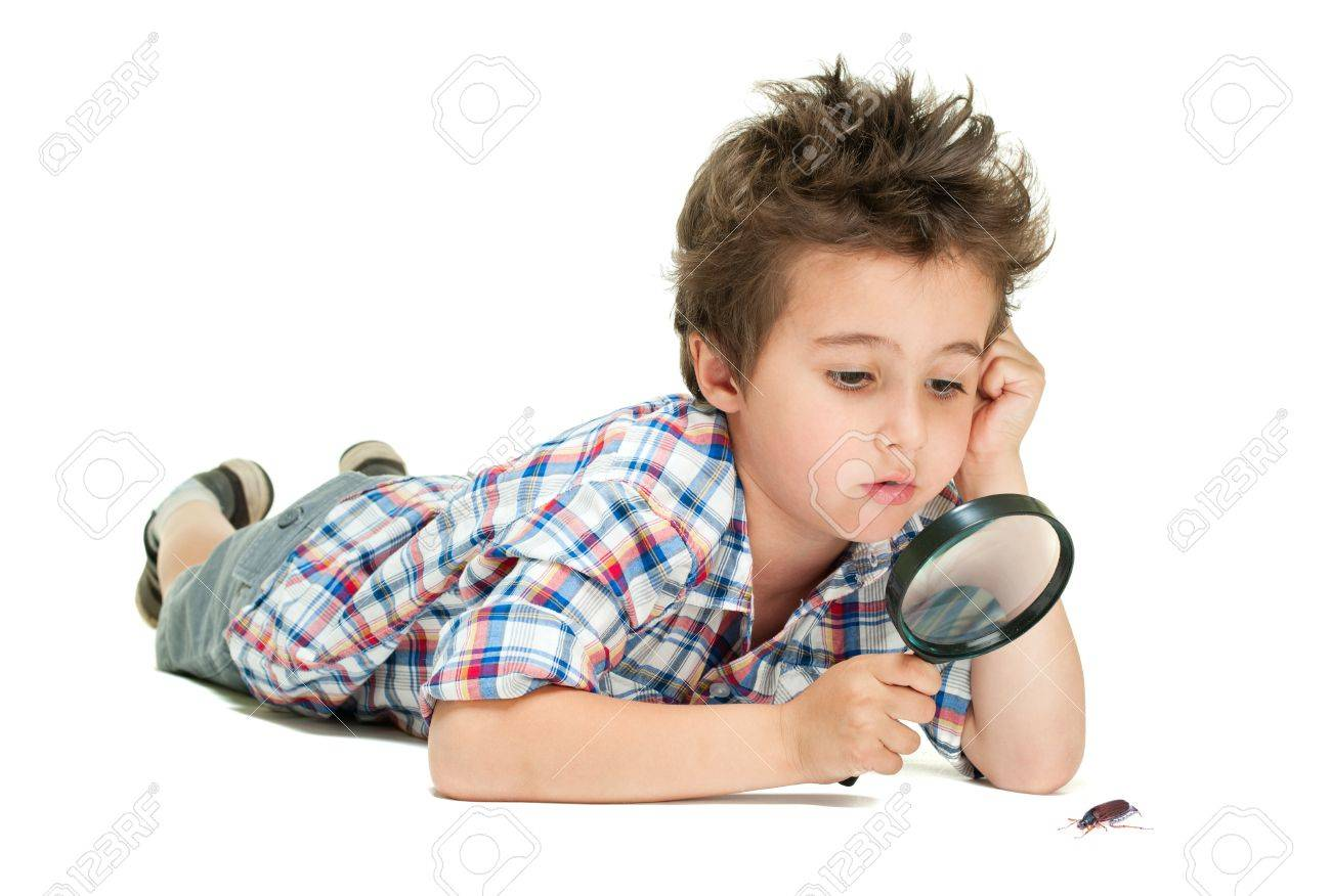 attentive little boy weird hair researching the bug using attentive little boy weird hair researching the bug using magnifier isolated on white stock photo