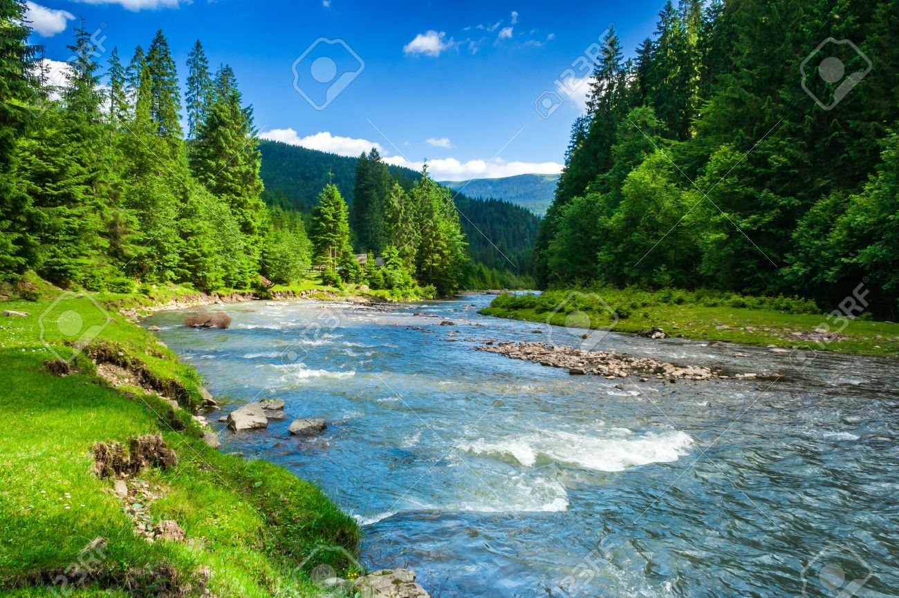 landscape with mountains trees and a river in front Stock Photo - 18964872