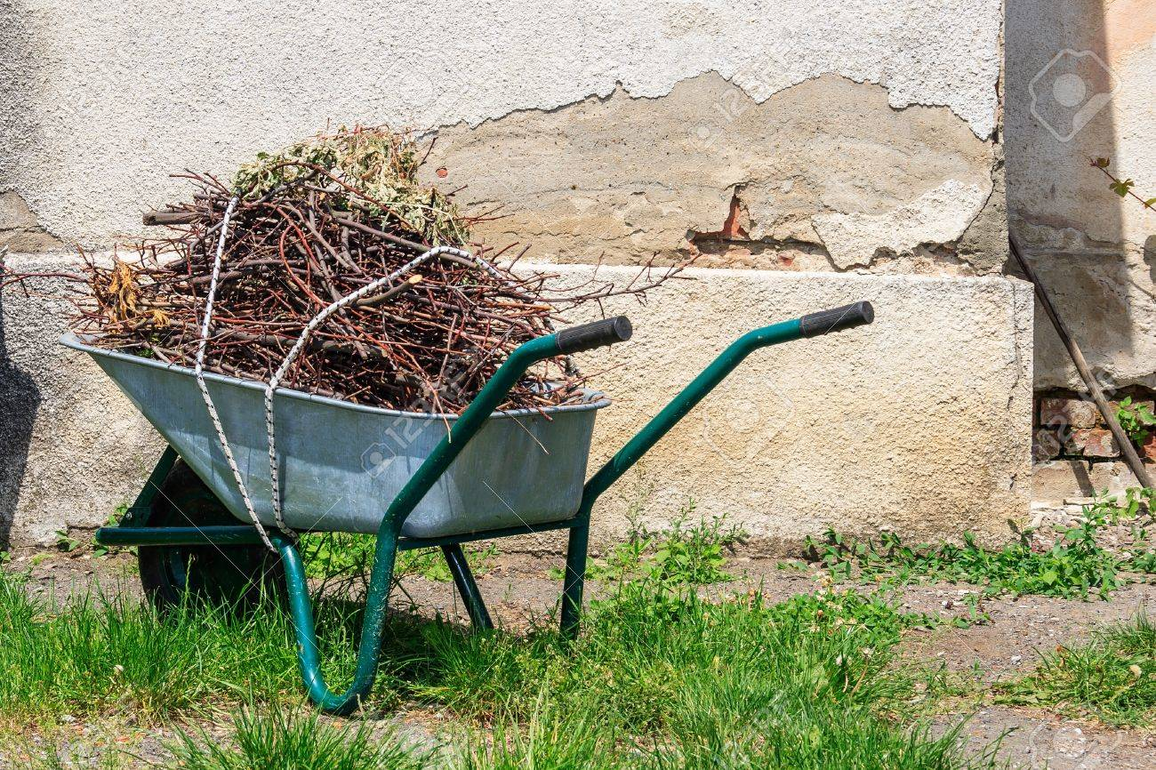 wheelbarrow filled with cut branches standing in the grass near the old wall - 21961827