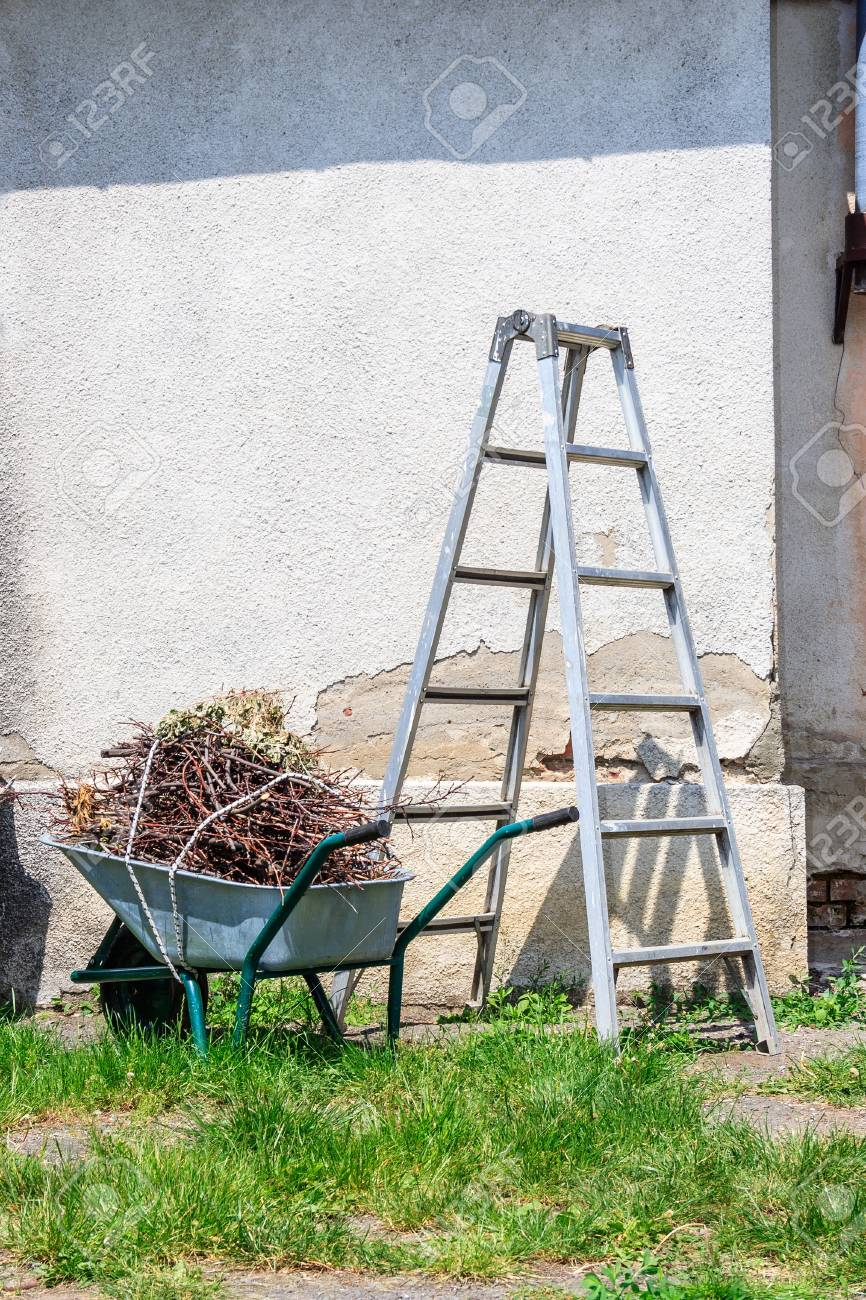 metal ladder and a wheelbarrow filled with cut branches standing in the grass near the old wall - 21961834