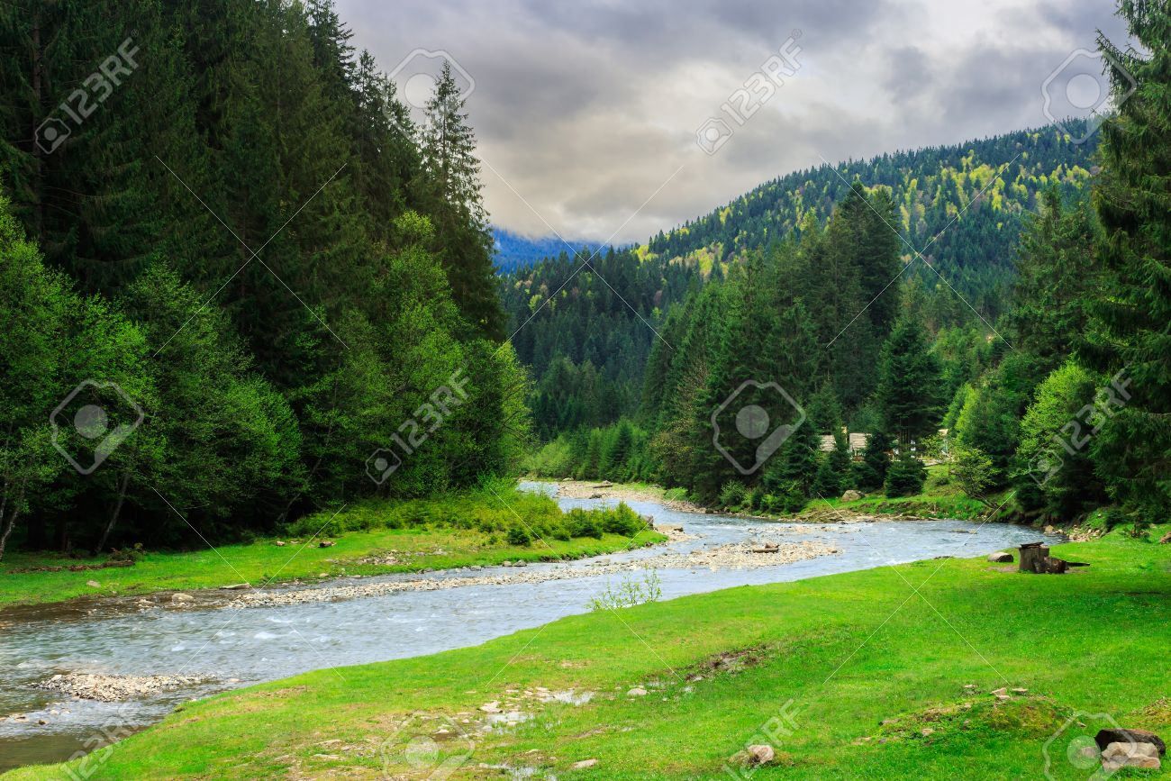 camping place on rocky shore of mountain river near the forest on dull day Stock Photo - 28833361