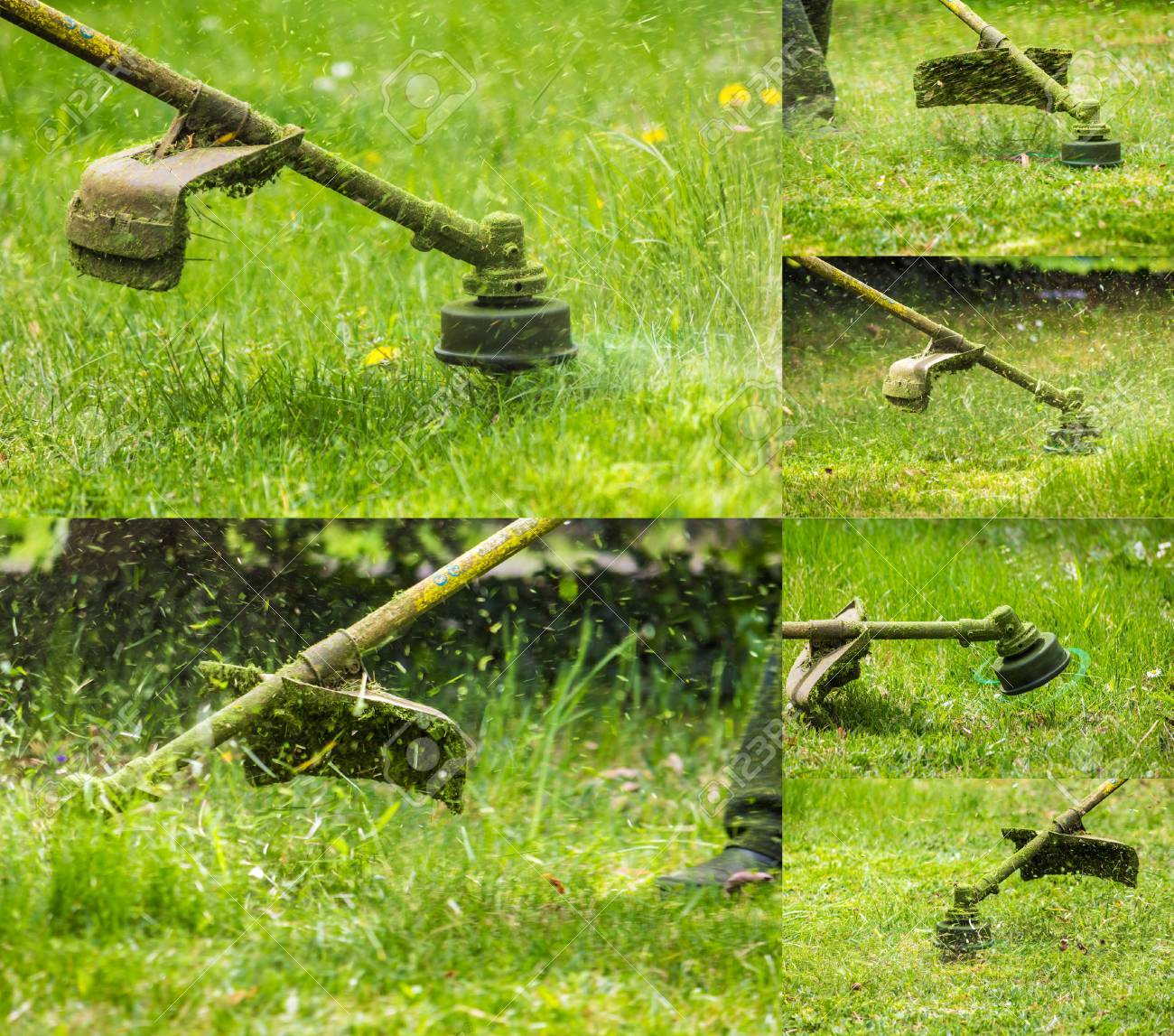 collage image of closeup shot of gasoline trimmer head with nylon line cutting fresh green grass to small pieces - 39425099