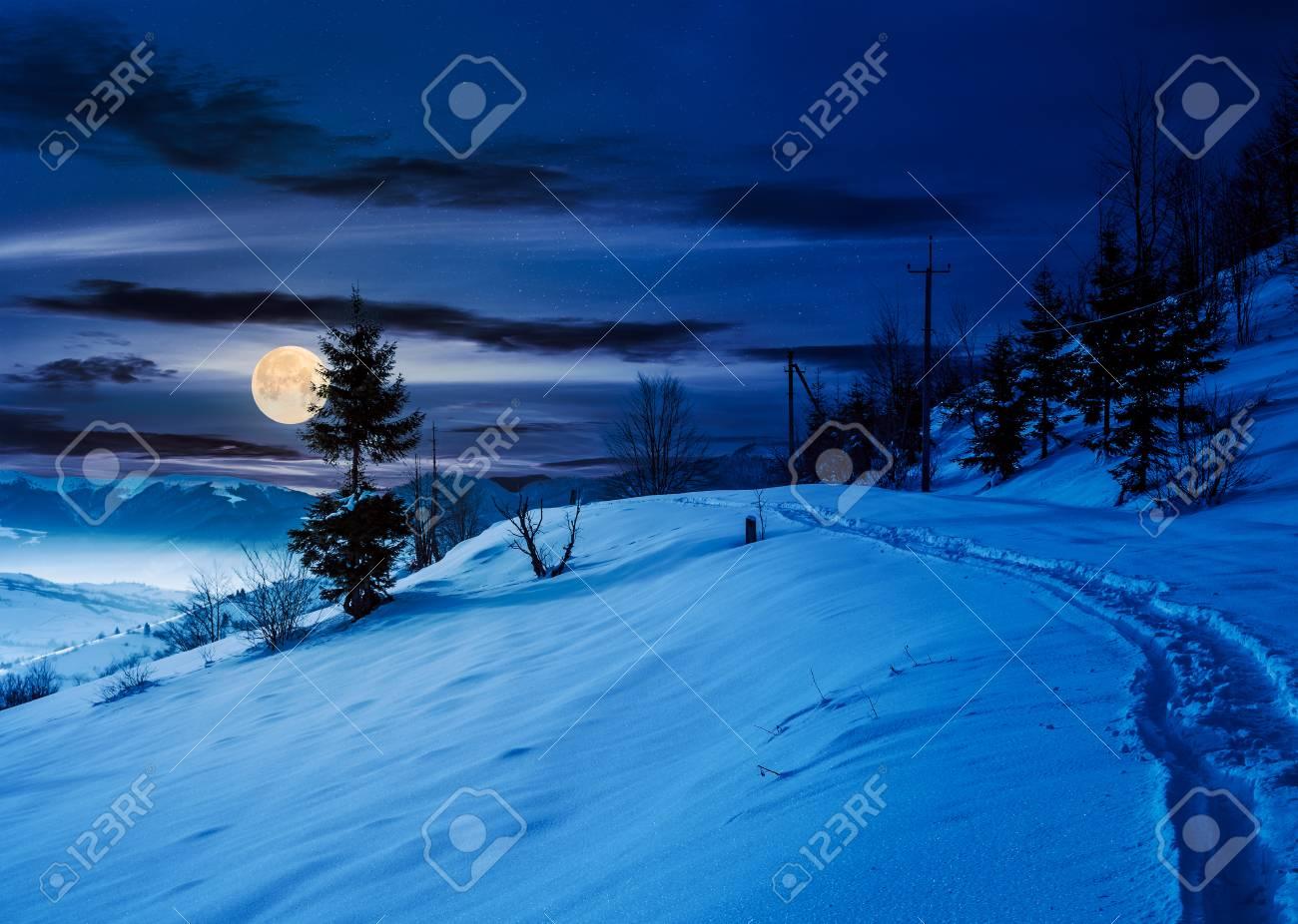Luna nevada