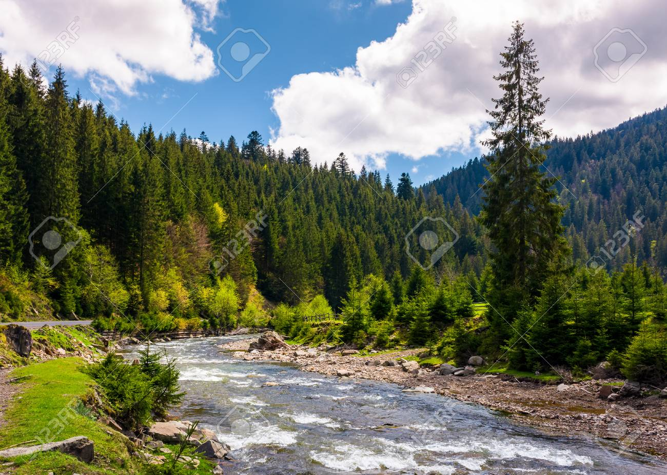 Beautiful Landscape With Forest River In Mountains Gorgeous