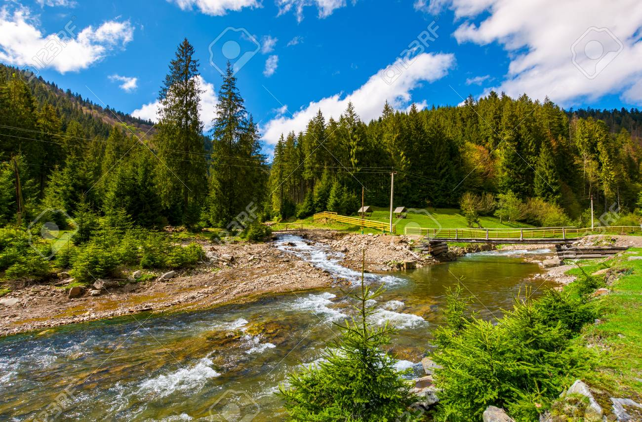 Beautiful Landscape With Forest River In Mountains Lovely Springtime