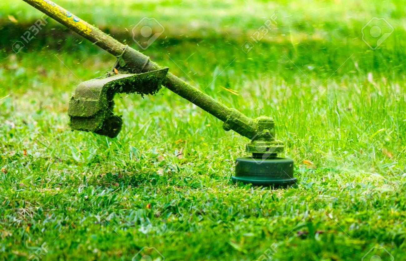 grass cutting in the garden with trimmer. lovely nature background - 99578627