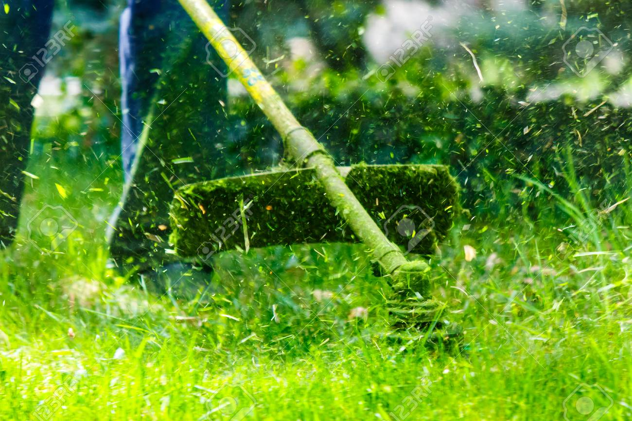 grass cutting in the garden with trimmer. lovely nature background - 99578653