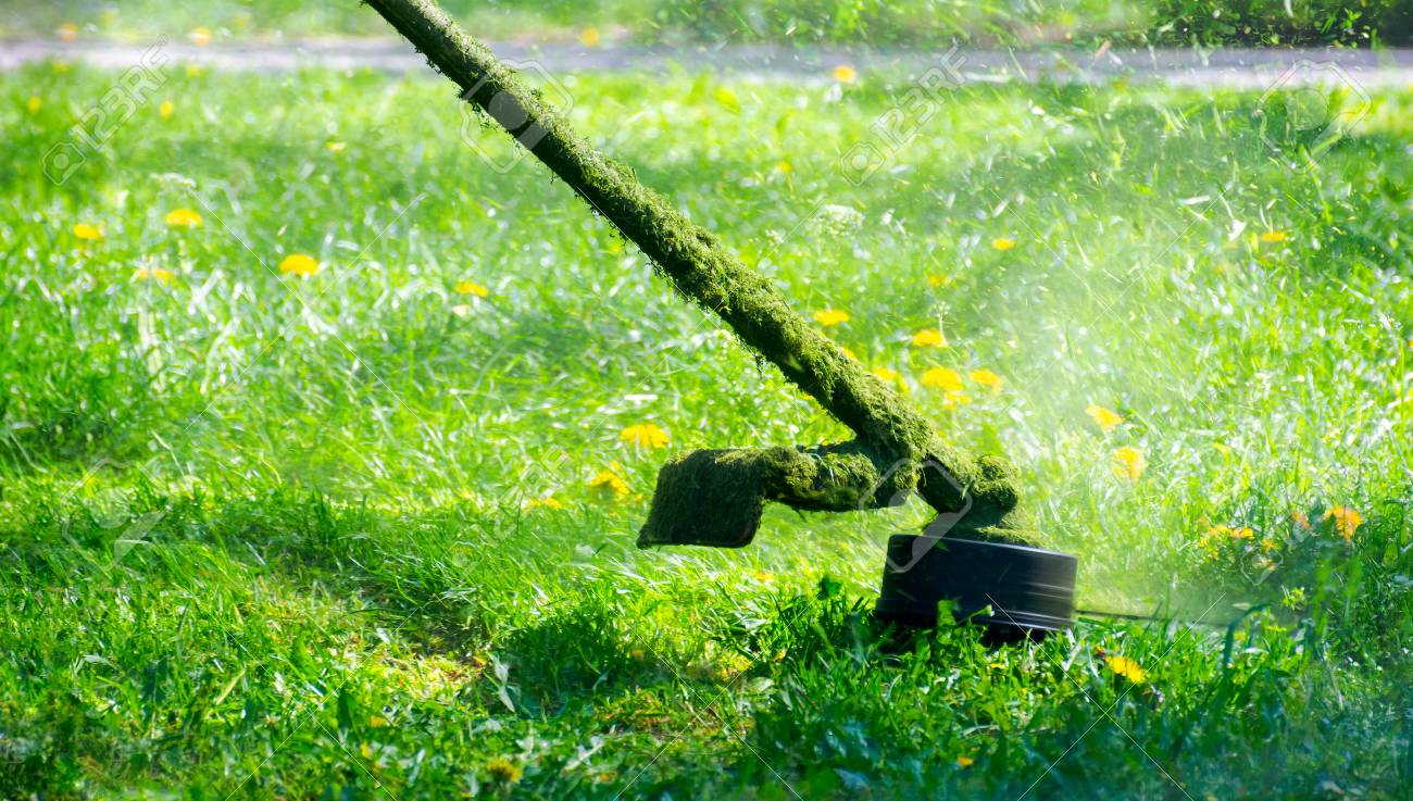 grass cutting in the garden with gasoline trimmer. lovely nature background - 104208783