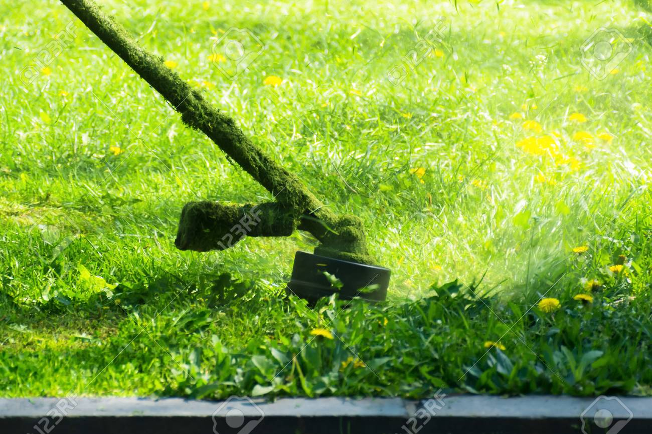 crazy grass cutting with brushcutter. head with nylon line cutting grass and dandelions in to small pieces. flying plant lumps. beautiful gardening background - 115869388