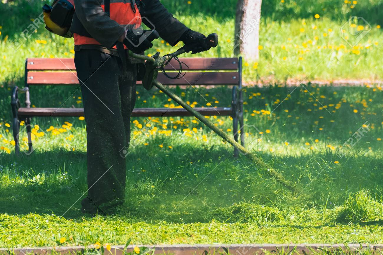 man in coveralls and red jacket with professional brush cutter mowing grass in the park. green lawn with yellow dandelions. bench in the background. sunny springtime weather - 116824914
