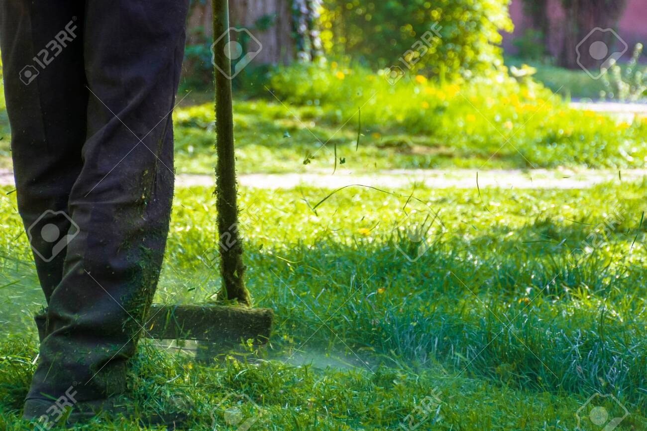 lawn care maintenance. professional grass cutting in the yard - 146091255