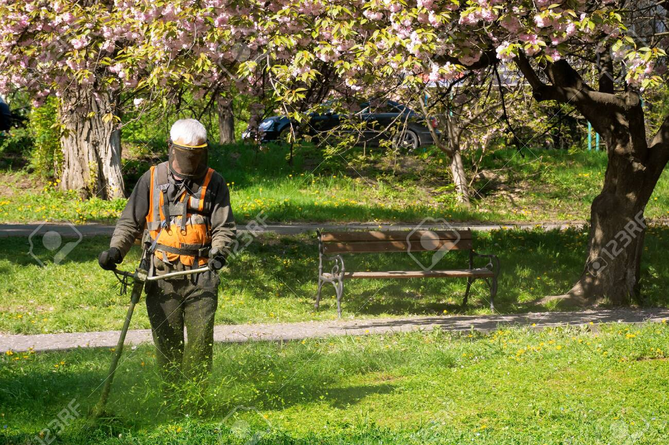 professional garden service at work. lawn care concept. cutting an mowing grass in the park. spring summer season - 149786063