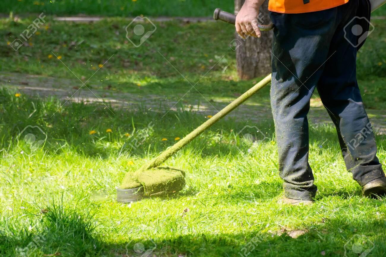 grass care with brush cutter. working with professional grade garden tool in the park. using trimmer line to mow grass on a sunny day in spring. pieces of weeds thrown apart in the air - 152941465