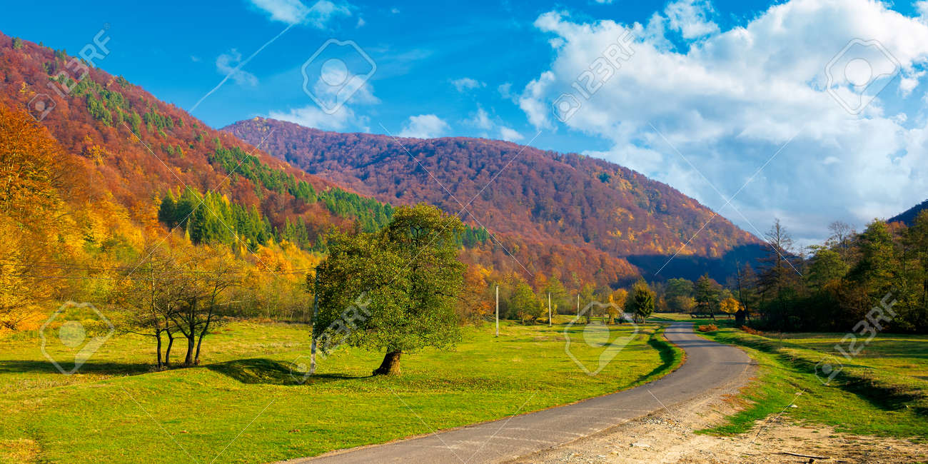 country road winding through the valley. wonderful autumn landscape in mountains. forest on hills in colorful foliage. sunny weather with fluffy clouds on the sky - 154879833