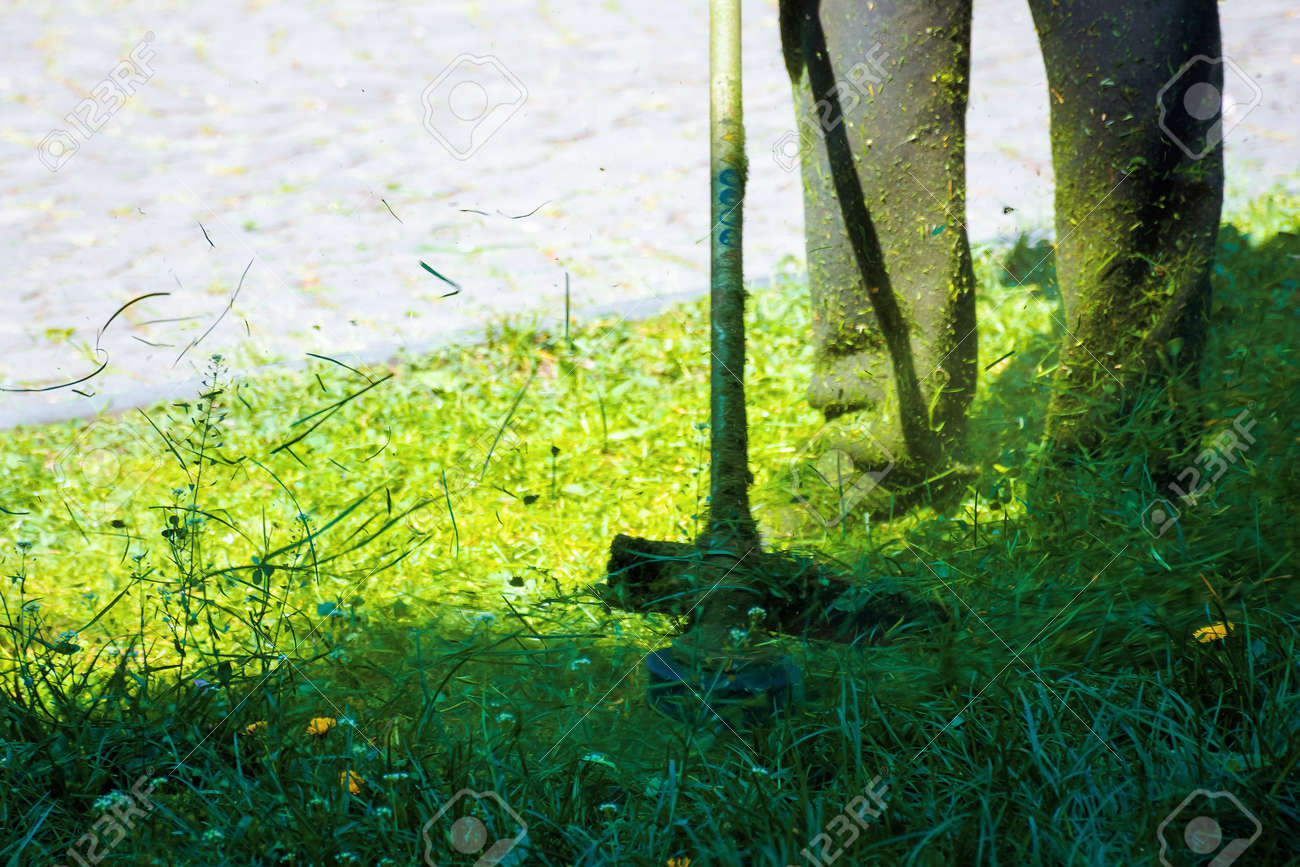 cutting lush green grass in the park. beautiful nature background. lawn care work in progress concept. brush cutter tool used to maintain gardens and outdoors - 163574219