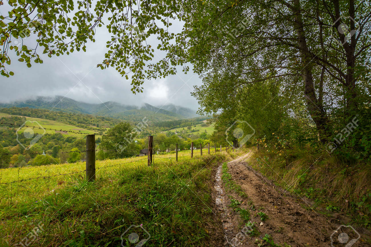 rural dirt road to village. autumnal countryside of carpathian mountains. rainy weather. fence along the meadow. gray heavy clouds above the valley - 170481882