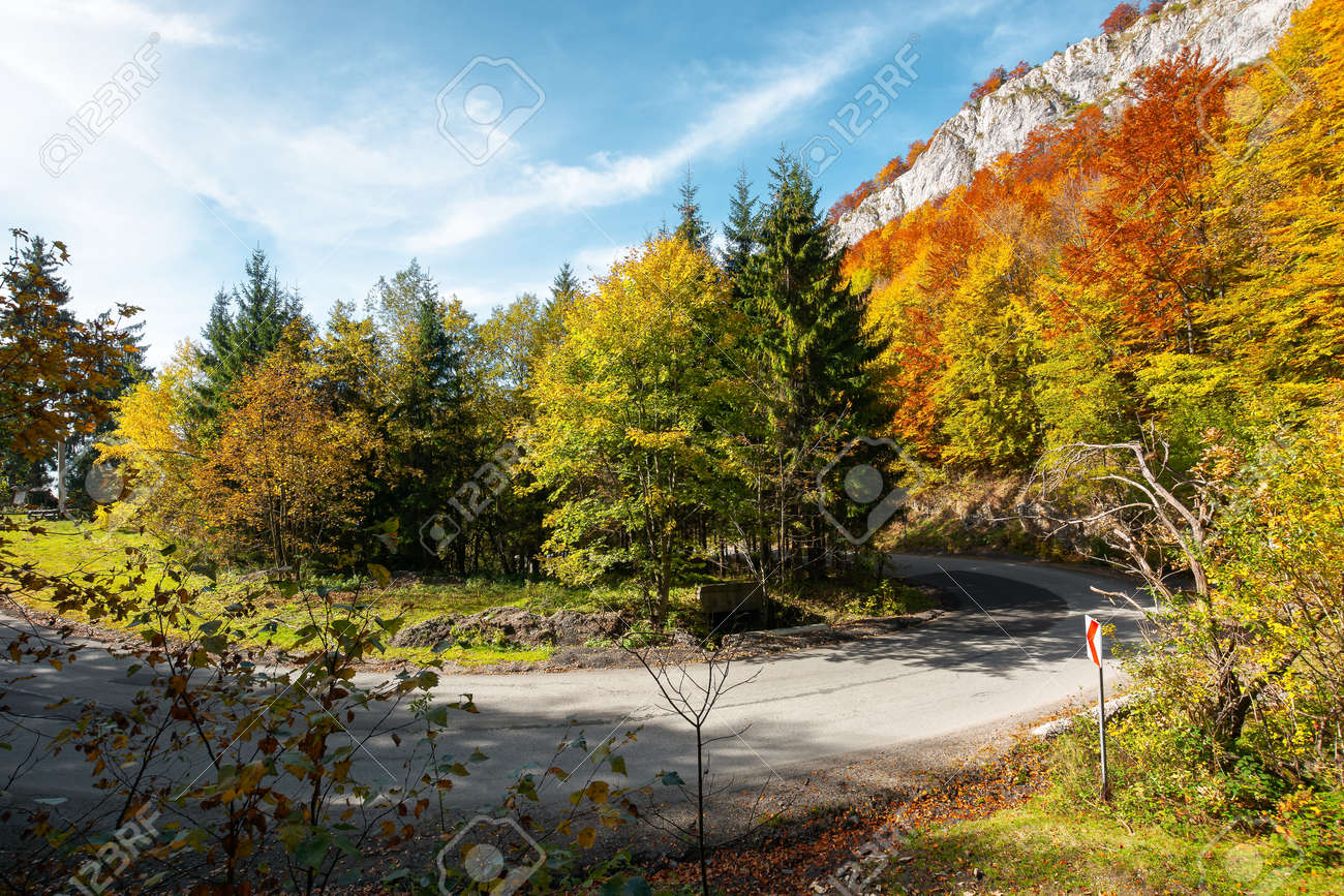road winding through mountainous landscape. sunny nature scenery in autumn. Pietrele Negre, Apuseni Natural Park, Bihor country, Romania - 170481831