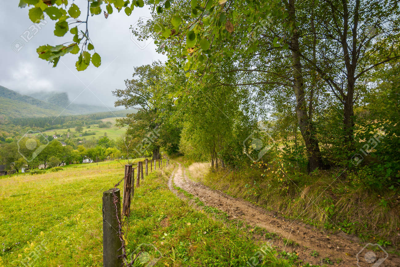 rural dirt road to village. autumnal countryside of carpathian mountains. rainy weather. fence along the meadow. gray heavy clouds above the valley - 169486752