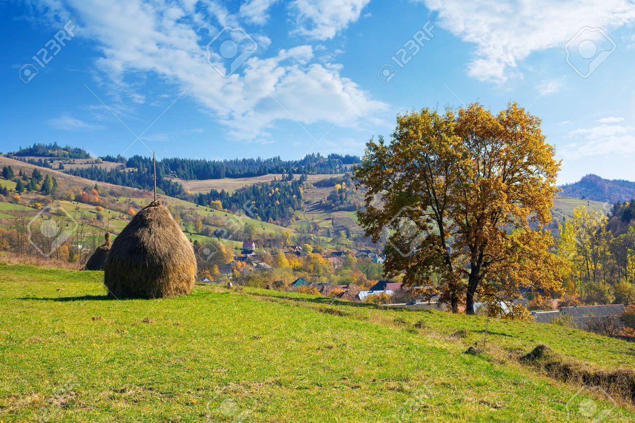 tree and haystack in fall foliage on the hill. autumnal rural scenery on a sunny day. village in the distant valley - 171833466