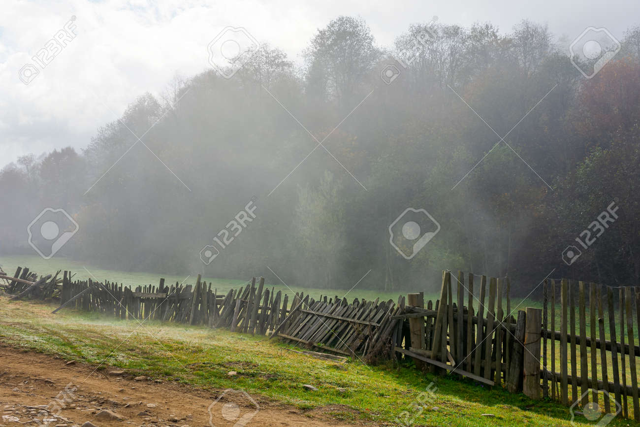 wooden fence on the field. rural landscape on a foggy morning in autumn. misty weather with overcast sky. trees in colorful foliage. - 173037260