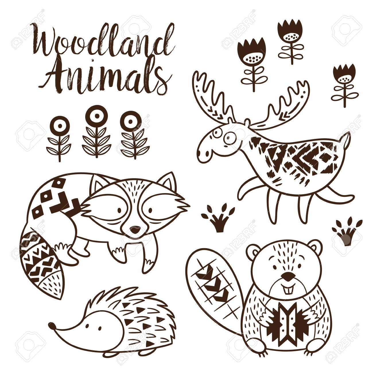 Woodland Animal Coloring Pages For Kids Hand Drawn On A White Background Book
