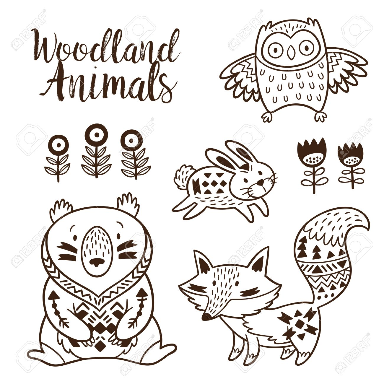 Woodland Animal Coloring Pages For Kids. Hand Drawn On A White Background.  Coloring Book