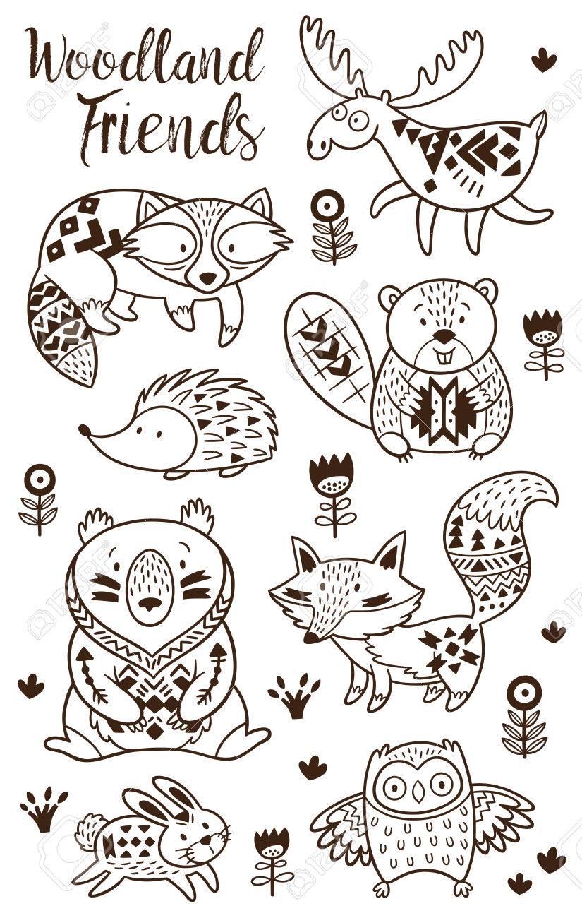 Los Animales Del Bosque Dibujos Para Colorear Para Los Niños Vector