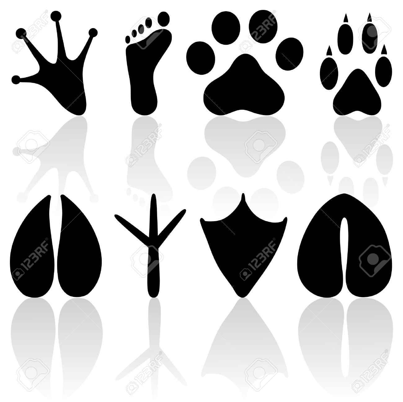 Footprint collection Stock Vector - 11295458