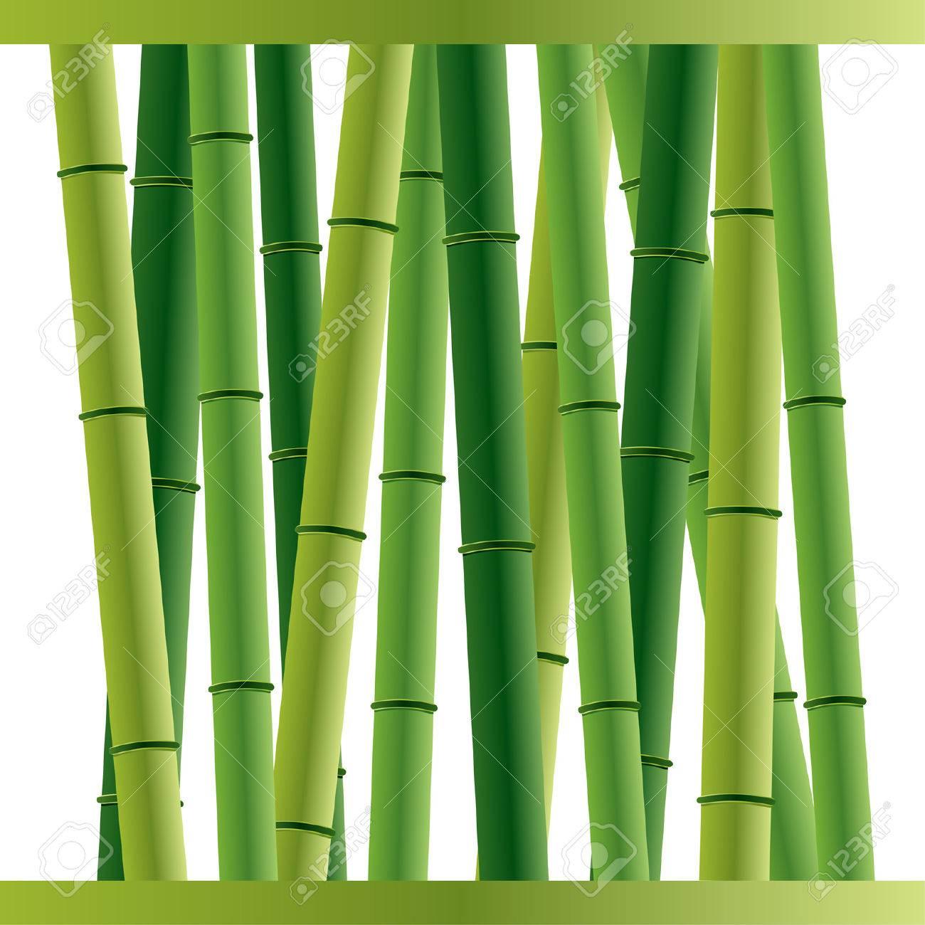 Fondo De Palos De Bambu En Blanco Ilustraciones Vectoriales Clip - Palos-de-bambu