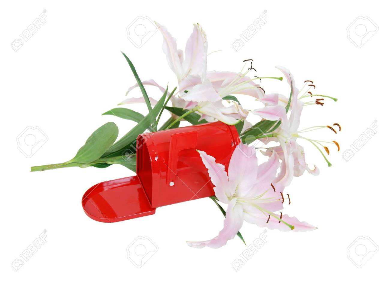 metal mailbox flag. Red Metal Mailbox With Signal Flag Amongst The White And Pink Lilies Stock Photo - 4871275 E